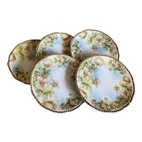 Bella Bordello Set 5 Antique Floral Plates Shabby Chic Romantic Saucer Size