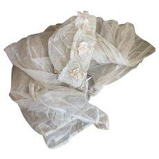 Gorgeous Antique Edwardian Bridal Wedding Veil Headdress Net Lace Ribbonwork Flower Rosettes