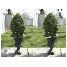 Pair of Classic Iron Footed Garden Urns