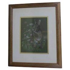 Vintage Framed Print by Jo Boswell Lumpkin Rabbit Bunny