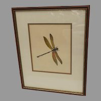 """Vintage Hand Colored Print """"Dragonfly"""""""