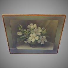 "Vintage Lithograph Print ""White Mallows"" by F. Julia Bach 1945 Shadow Box Frame"