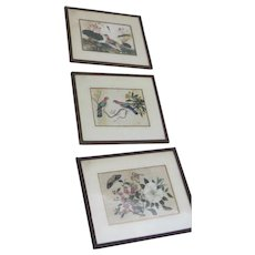 Group of Three Hand Painted on Silk Chinese Bird Insects Paintings
