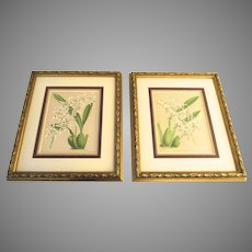 Two (2) John Nugent Fitch Color Prints Framed Orchids