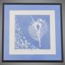 "Vintage Print of Nautilus Signed ""Block Numbered 4/100"