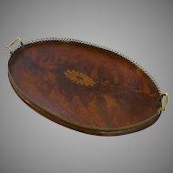 English Mahogany Tray Inlaid Fan Brass Gallery Edge Side Handles 19th Century