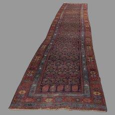 "Persian 1900's Long Runner Rug 199""(16' 7"") by 37"""