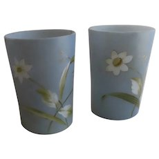 Opaque Pair of 19th Century Hand Painted Tumblers