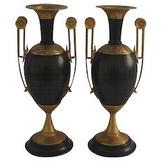 Pair of 19th Century Urns with Gilt Bronze Ormolu Mounts