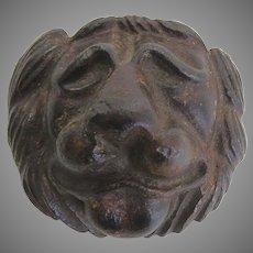 19th Century Cast Iron Lion's Face
