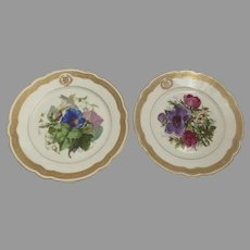 Two (2) Hand Painted Porcelain Plates by Charles Ahrenfeldt Limoges Retailed by Grand Depot Paris France French