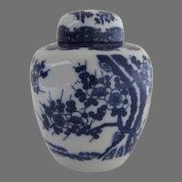 Vintage Chinese Blue White Prunus Tea Caddy
