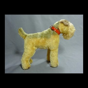 Spunky Mohair Terrier with Original Red Collar