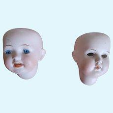 Antique Bisque Doll Heads