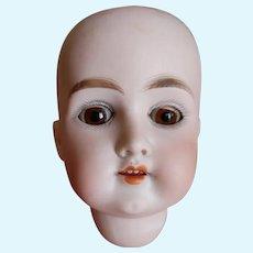 Antique German Doll Head Floredora