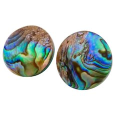 Colorful Abalone Shell Button Earrings
