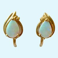 18K Gold Opal Screw Back Earrings