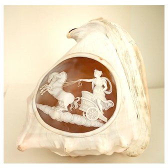 Conch Shell With Cameo Of Diana