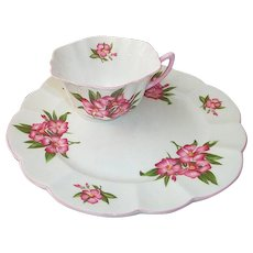 Shelley Porcelain Oleander Toast / Snack Set  England
