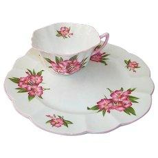 Shelley Porcelain Oleander Toast / Snack Set  England
