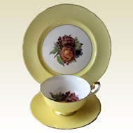 Shelley Yellow Gainsborough Footed Cup, Saucer and Luncheon Plate Trio- Fruit.