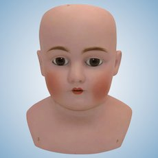 Antique German Kestner Bisque Shoulder Doll Head.