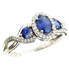 Le Vian 14 Karat White Gold 1.00 CTW Tanzanite & Diamond Halo Ring #VR41