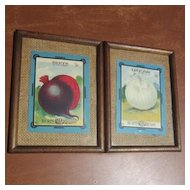 """Pair of """"Burt's Seed for Quality"""" Onion and Beet Pictures"""