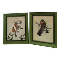Pair of Framed Bird Prints James Gordon Irving