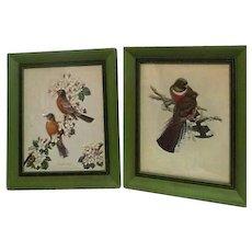 Pair of Framed Bird Prints James Gordon Irving