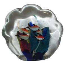 Art Glass Paperweight Fish Swimming in Clam Shell Shape