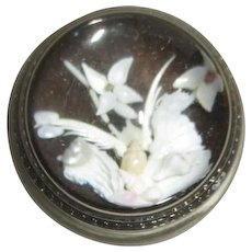 Round Glass Paper Weight with Sea Shells