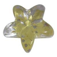 Robert Held Studio Art Glass Starfish Paperweight