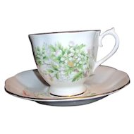 On Cup and Saucer Set from Friendship Series by Royal Albert Hawthorne Pattern