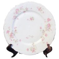 Theodore Haviland Limoges Antique Dinner Plate Marie Pattern