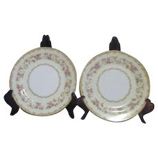 Set of 2 Columbine Pattern  Noritake Salad Plates