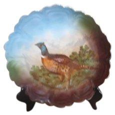 Z.S.&C0. Bavarian Cock Pheasant Plate c1900