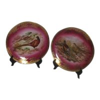Pair of Decorator Plates with Pheasants on Deep Pink Background West Germany