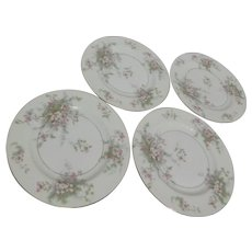 Theodore Haviland Apple Blossom Salad Plates Set of 4