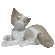LLadro Kitten Contemplating Its Tail