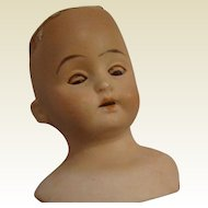 Antique Doll Shoulder Head