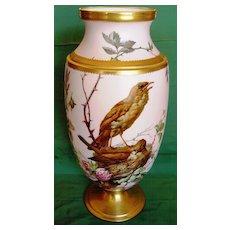 Antique French Porcelain N. Vivien Bird Vase