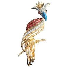 Florenza Figural Crown Bird on Branch Brooch