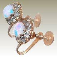 Foil Opal Screw Back Earrings