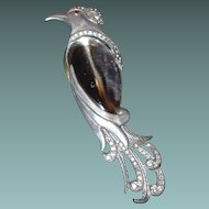 Rare Lucite Jelly Belly Bird Brooch by H. Pomerantz