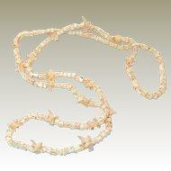 RARE Snake Bone Native American Hopi Necklace FINAL REDUCTION SALE