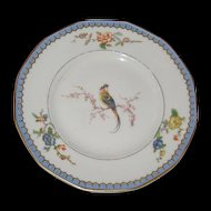 Theodore  Haviland Limoges  bread and butter plate. One of Havilands older patterns