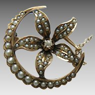 Victorian Seed Pearl Diamond Flower and Crescent Moon Gold Brooch/Pendant