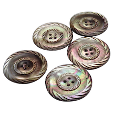 Five Large Carved Abalone Buttons