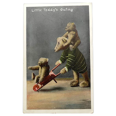 Fabulous Steiff Bear Edwardian Post Card